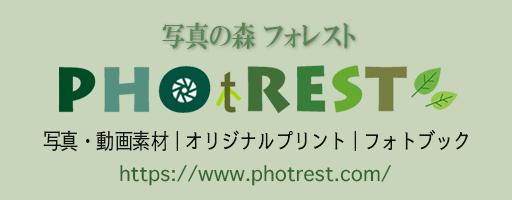photrest site banner